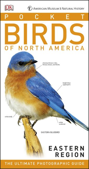 Paperback cover of American Museum of Natural History: Pocket Birds of North America, Eastern Region