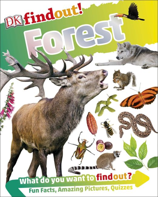 Paperback cover of DKfindout! Forest