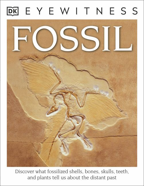 Paperback cover of DK Eyewitness Books: Fossil