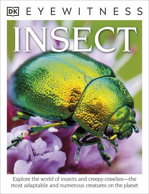 Paperback cover of DK Eyewitness Books: Insect