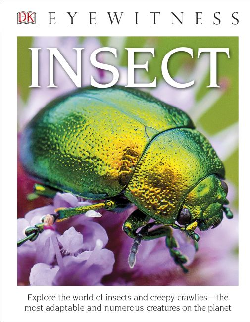 Hardback cover of DK Eyewitness Books: Insect (Library Edition)