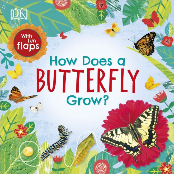 Board book cover of How Does a Butterfly Grow?