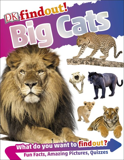 Hardback cover of DKfindout! Big Cats