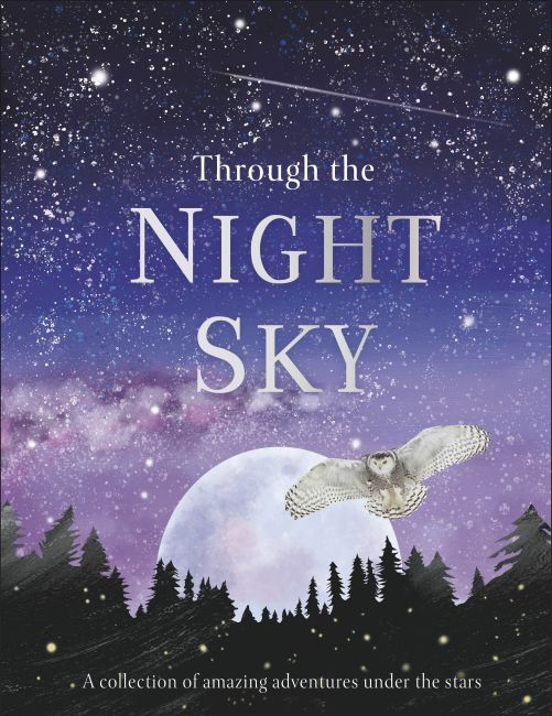 Hardback cover of Through the Night Sky