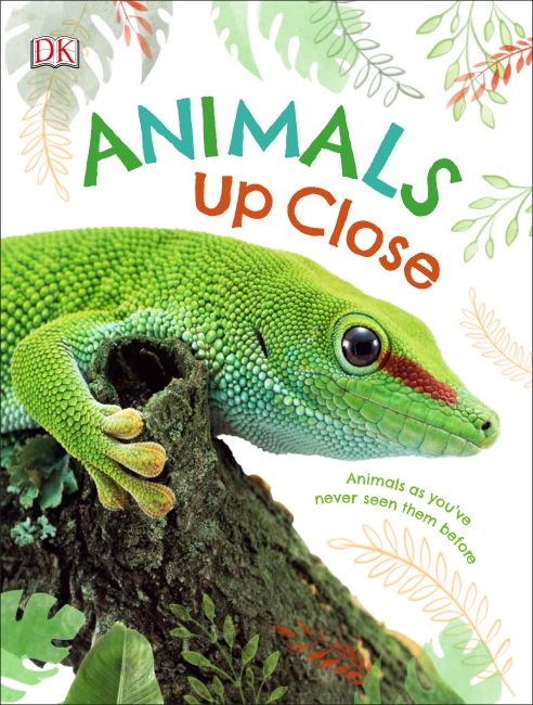 Hardback cover of Animals Up Close