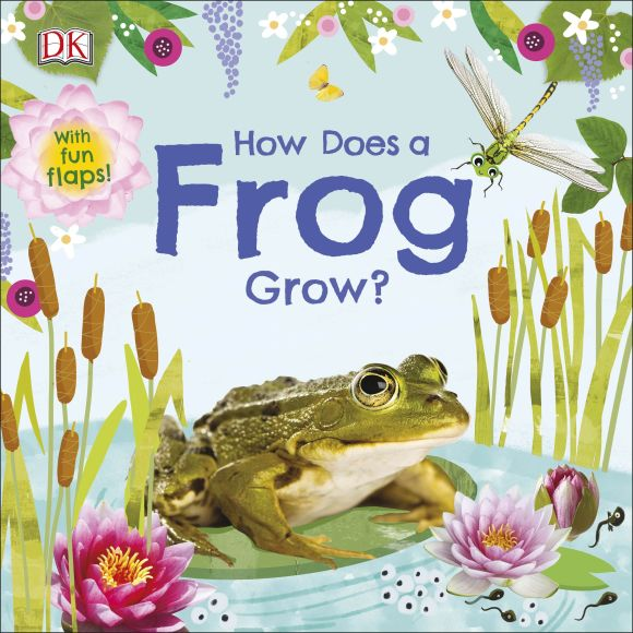 Board book cover of How Does a Frog Grow?