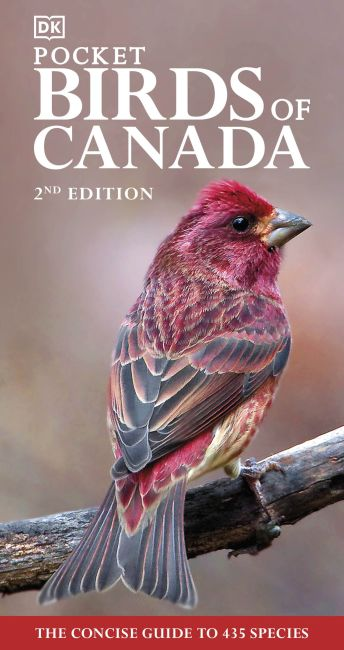 Paperback cover of Pocket Birds of Canada