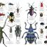 Thumbnail image of Natural History - 1