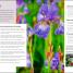 Thumbnail image of RHS How to Create your Garden - 2