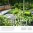 Thumbnail image of RHS How to Create your Garden - 4
