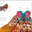 Thumbnail image of Zoology - 9