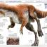 Thumbnail image of Knowledge Encyclopedia Dinosaur! - 3