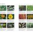 Thumbnail image of Canadian Gardener's Guide 3rd Edition - 5