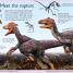 Thumbnail image of First Dinosaur Encyclopedia - 3