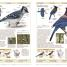 Thumbnail image of Birds of Western Canada 2nd Edition - 2