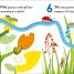 Thumbnail image of Counting with a Ladybird - 1