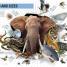 Thumbnail image of Super Nature Encyclopedia - 3