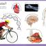 Thumbnail image of First Human Body Encyclopedia - 3