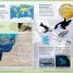 Thumbnail image of First Earth Encyclopedia - 3