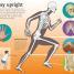 Thumbnail image of Utterly Amazing Human Body - 2