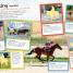 Thumbnail image of Horses and Ponies Ultimate Sticker Book - 2