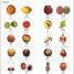Thumbnail image of Complete Language Pack Mandarin Chinese - 4