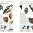 Thumbnail image of RSPB Complete Birds of Britain and Europe - 7
