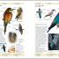 Thumbnail image of RSPB Complete Birds of Britain and Europe - 8