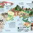 Thumbnail image of What's Where on Earth? Animal Atlas - 3