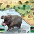 Thumbnail image of What's Where on Earth? Animal Atlas - 5