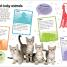 Thumbnail image of Sticker Encyclopedia Baby Animals - 1