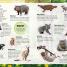 Thumbnail image of Sticker Encyclopedia Baby Animals - 4