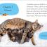 Thumbnail image of DK Reader Level 2: Cats and Kittens - 1