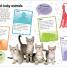 Thumbnail image of Sticker Encyclopedia Baby Animals - 1