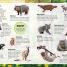 Thumbnail image of Sticker Encyclopedia Baby Animals - 4