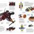 Thumbnail image of The LEGO® Ideas Book - 6