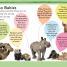 Thumbnail image of DK Readers L2: The Great Panda Tale - 3