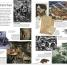 Thumbnail image of DK Eyewitness Books: World War I - 1