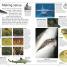 Thumbnail image of DK Eyewitness Books: Shark - 1