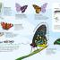 Thumbnail image of Ultimate Sticker Book: Bugs - 2