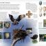 Thumbnail image of Birds of Western Canada 2nd Edition - 1