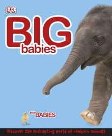 Big Babies, Little Babies