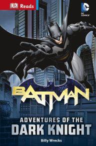 DC Comics Batman Adventures of the Dark Knight