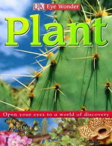 Eye Wonder: Plant