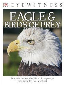 DK Eyewitness Books: Eagle & Birds of Prey