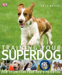 Training Your Superdog