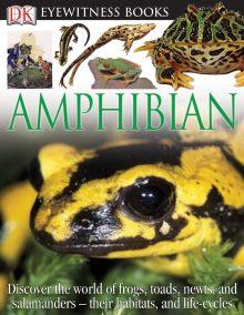 DK Eyewitness Books: Amphibian
