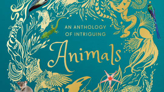 An Anthology of Intriguing Animals: Look Inside the Book
