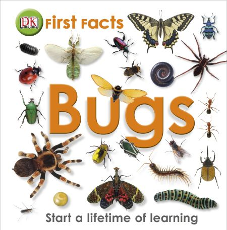 First Facts Bugs