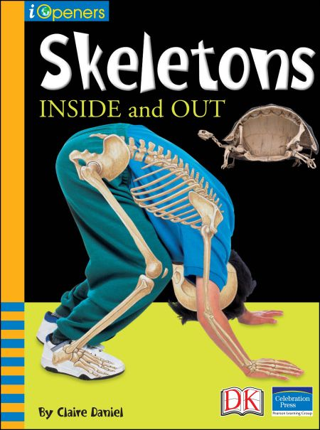 iOpener: Skeletons Inside and Out